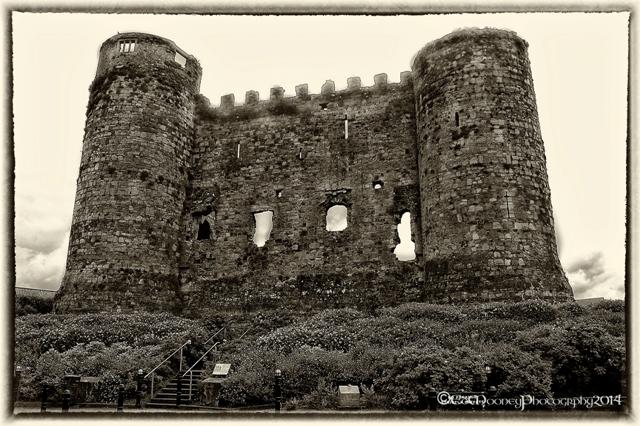 Carlow Castle (1)